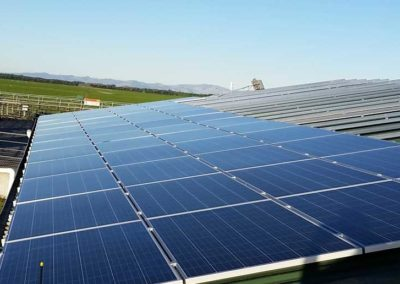 Farm-solar-installation1