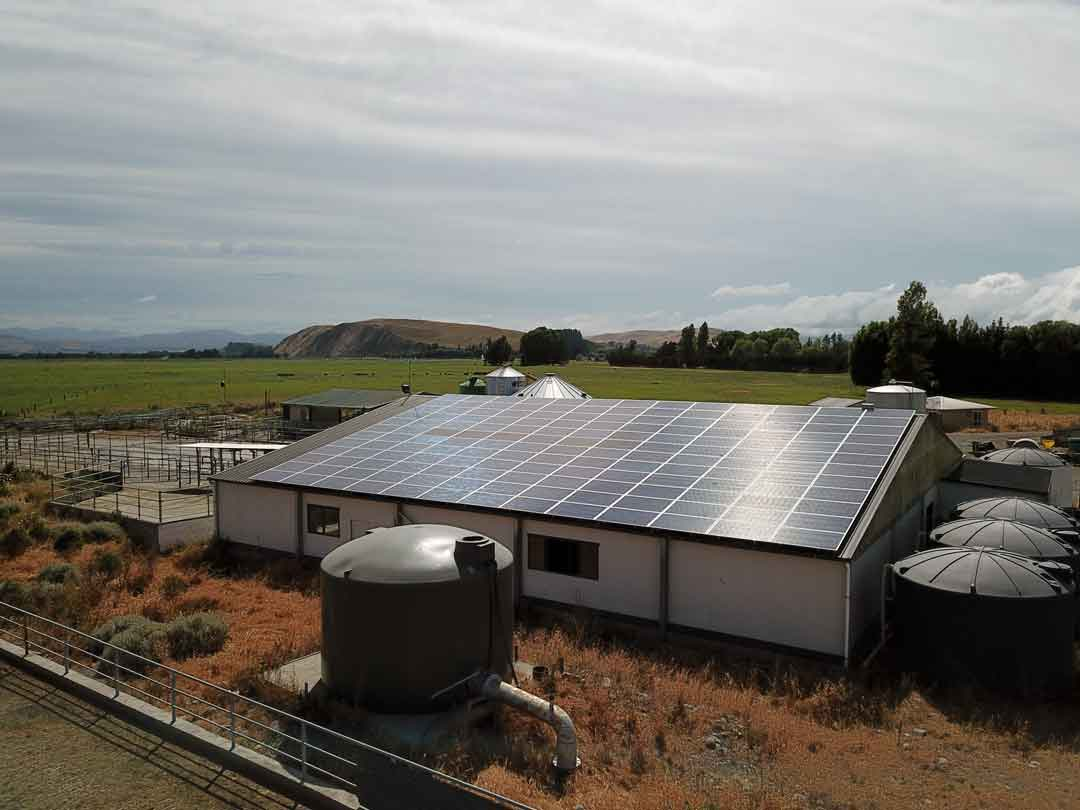 Dairy shed solar installation canterbury